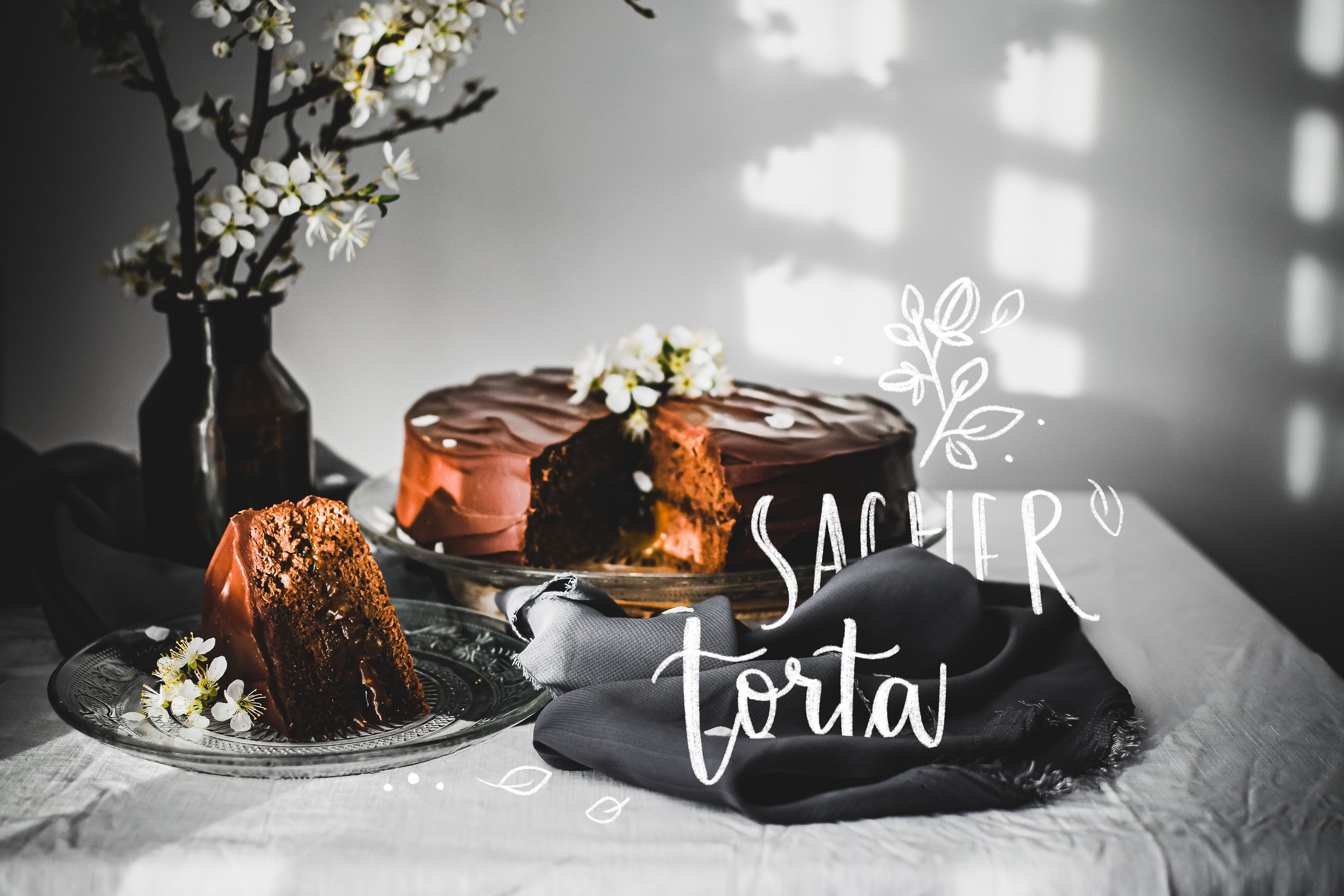 sacher cake photography torta
