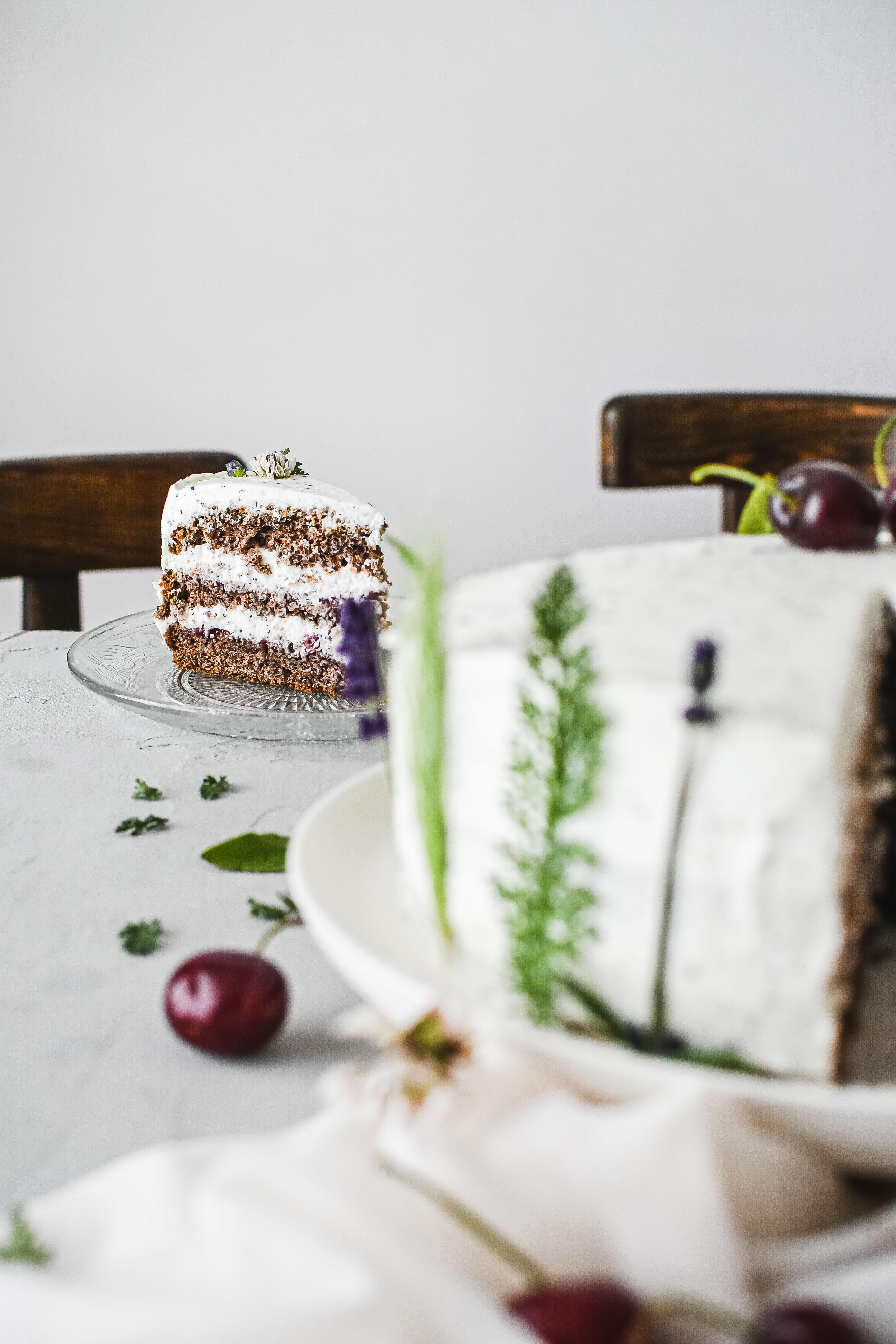 makova torta poppy seed cake photography