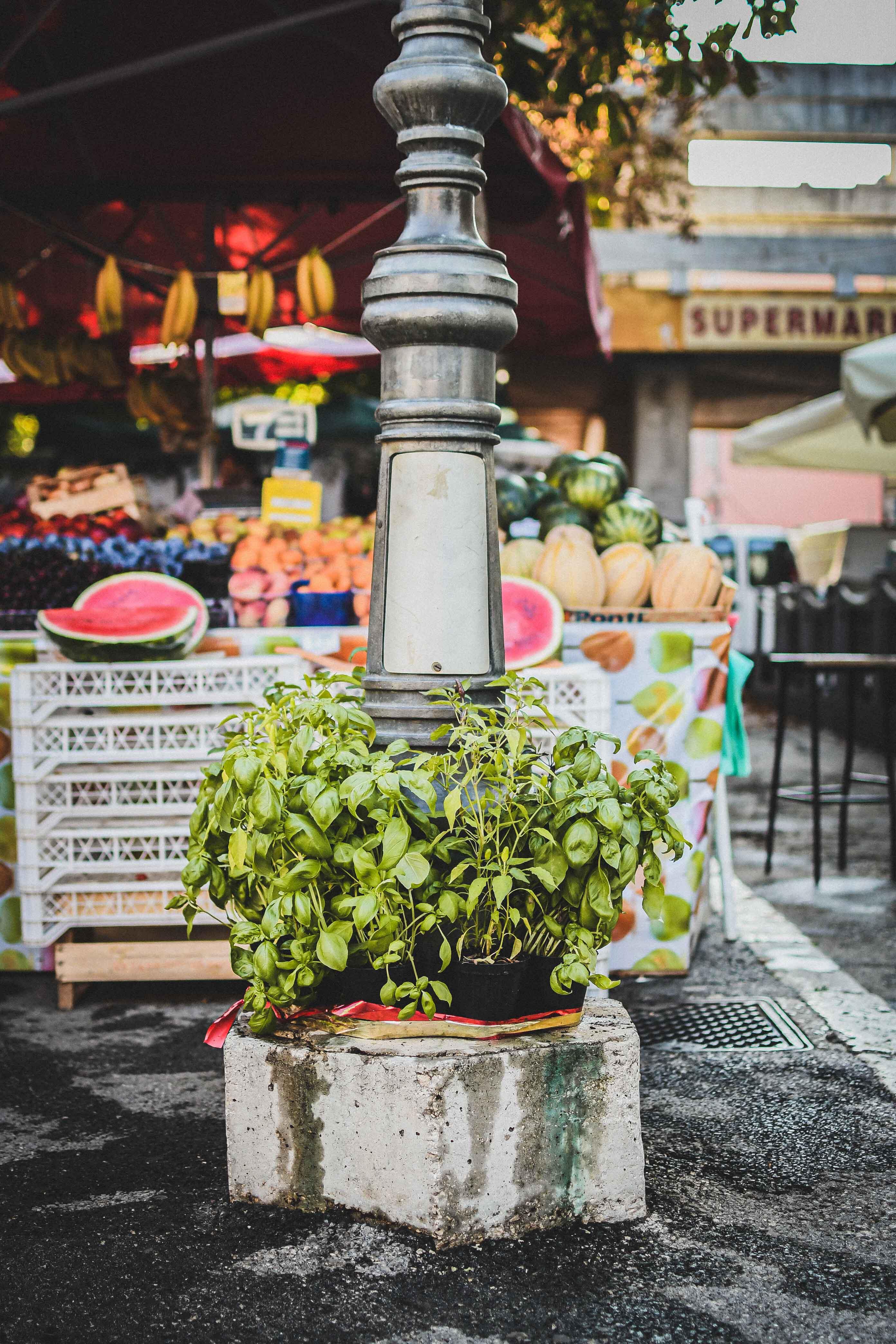 croatia pula market